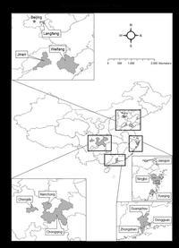 twelve sample cities in china
