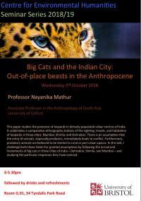 Nayanika Mathur Bristol lecture